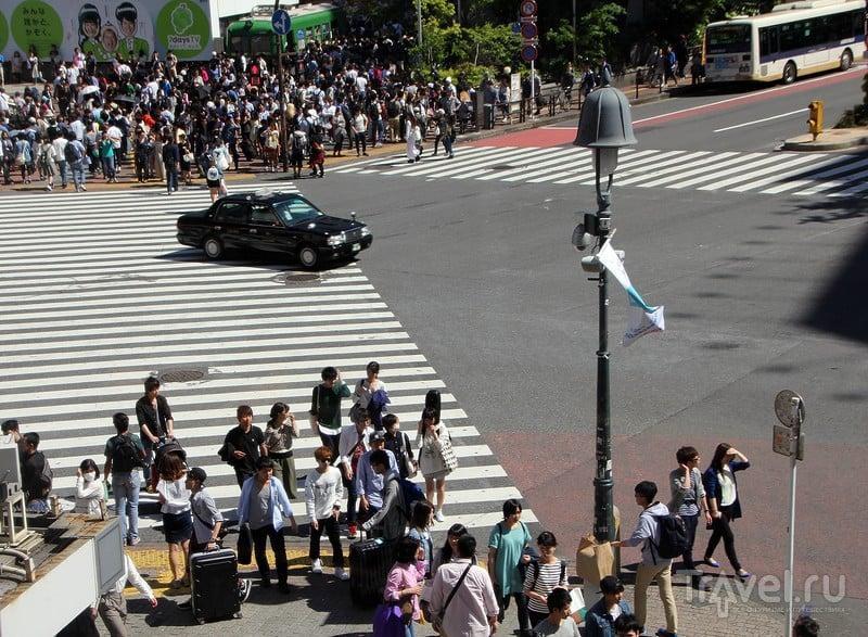 """""""Золотая неделя"""" в Японии: опять Токио / Фото из Японии"""