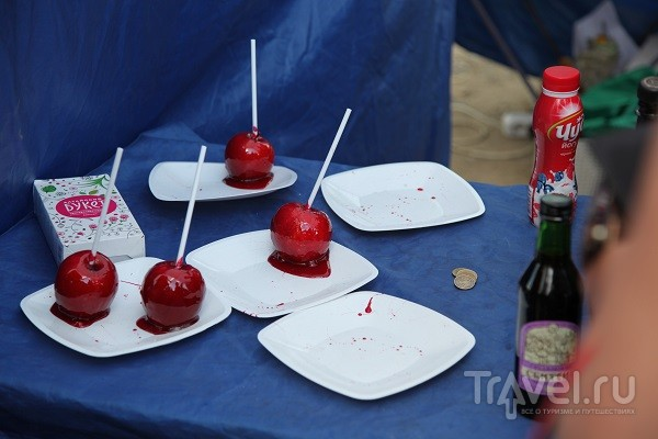 Международный фестиваль Крапивы в Тульской области / Россия