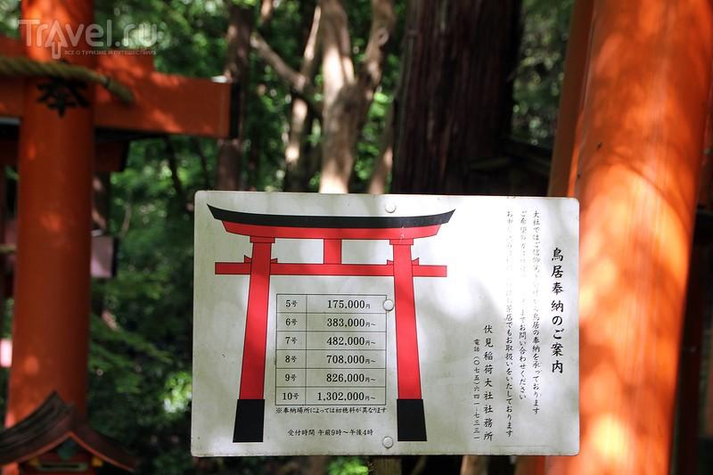 Arashiyama и Fushimi Inari / Япония