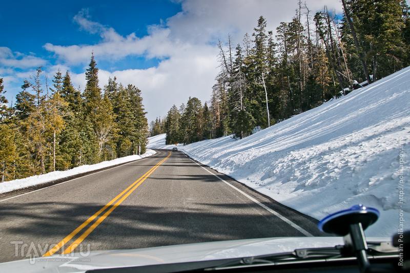 Каньон Брайс, Юта, США / Фото из США
