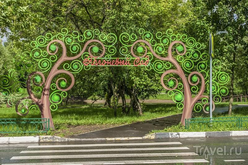 30 минут из жизни одного московского парка / Россия