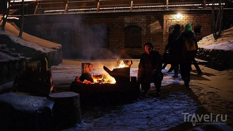 Зимние ночи в рижском зоопарке / Латвия