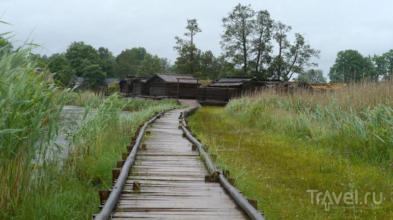 Озерный замок Арайши / Латвия
