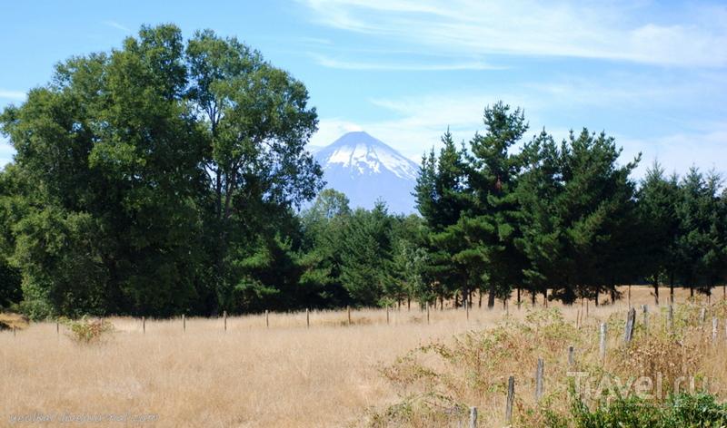 Чили - сбыча мечт! Край вулканов и озер. Источники Ралун, и дорога в никуда... / Фото из Чили