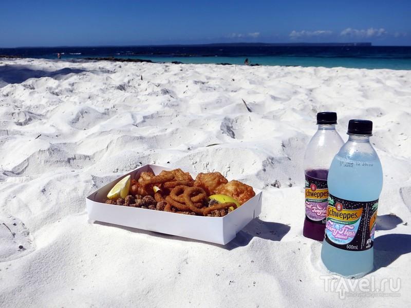 Австралия материковая: от Сиднея до Мельбурна / Фото из Австралии
