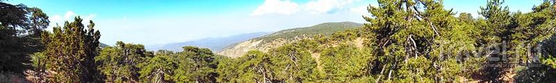 Микро-круиз по горам и предгорьям Троодоса: пять мест и незапланированный бонус из мира животных! / Фото с Кипра
