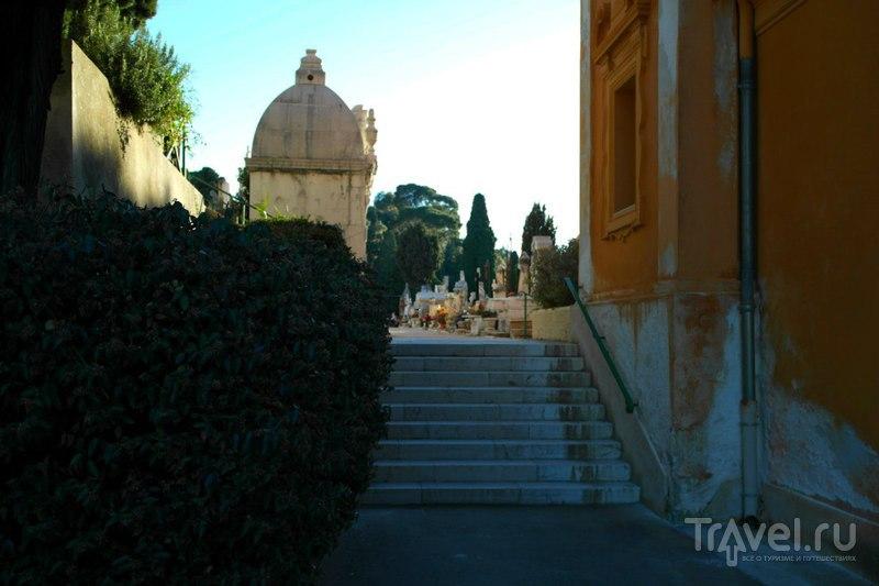 Ницца, Франция - Еврейское и обычное кладбище и немного вокруг / Фото из Франции