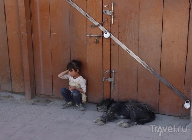 Прогулка по Леху / Фото из Индии