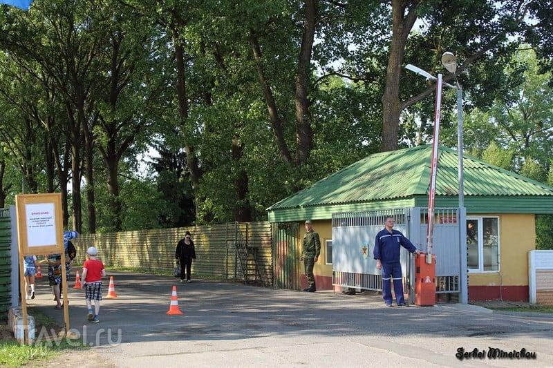 "Авиашоу ""Барановичи - 145 лет"" / Фото из Белоруссии"