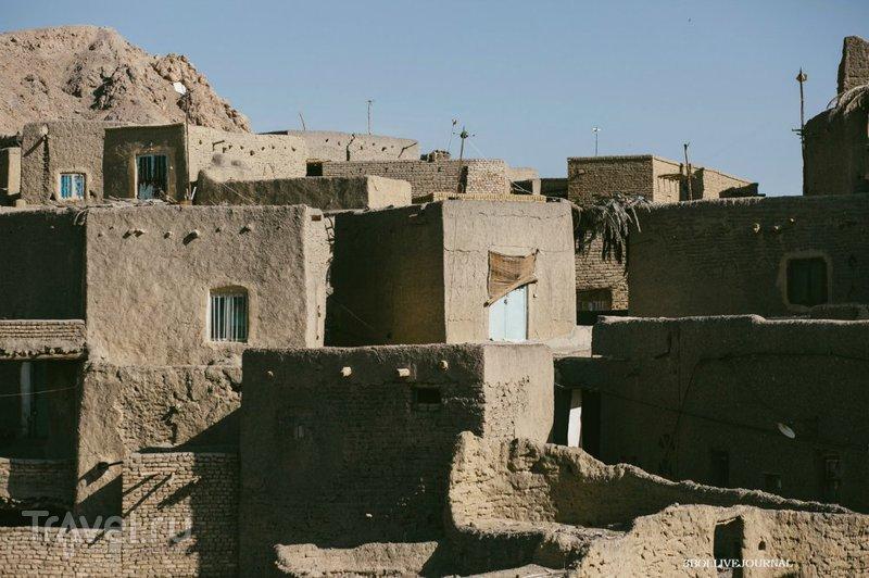Оазис в Иранской пустыне / Иран