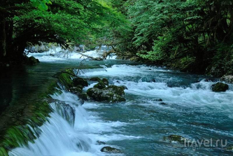 Река Мчышта, выходящая прямо из скалы, дает воду для форелевых хозяйств / Россия