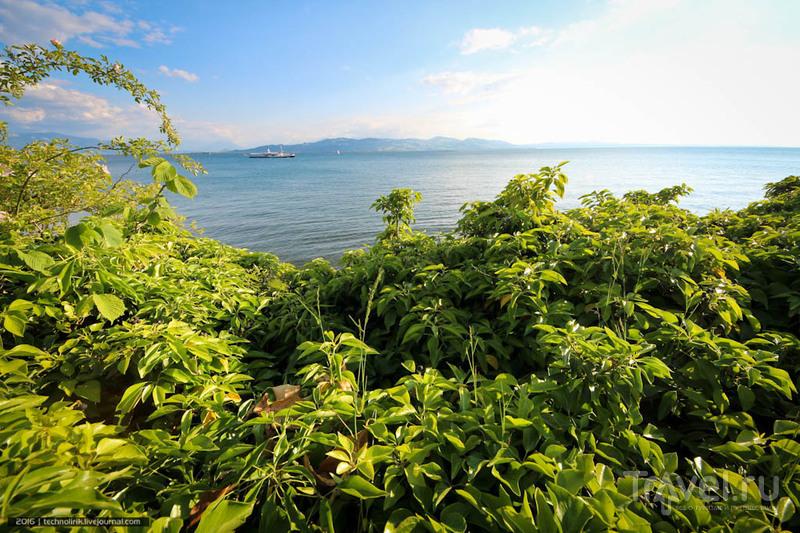 Остров Линдау - лучшее место на Боденском озере / Фото из Германии
