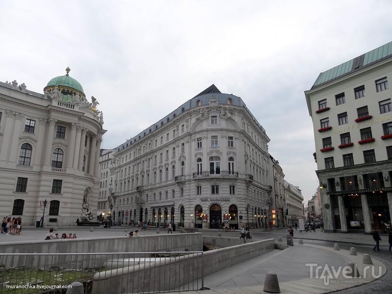 Михаэльплац, четыре церкви, одна золотая пчела и много мишек в стиле ретро - это всё Вена / Австрия