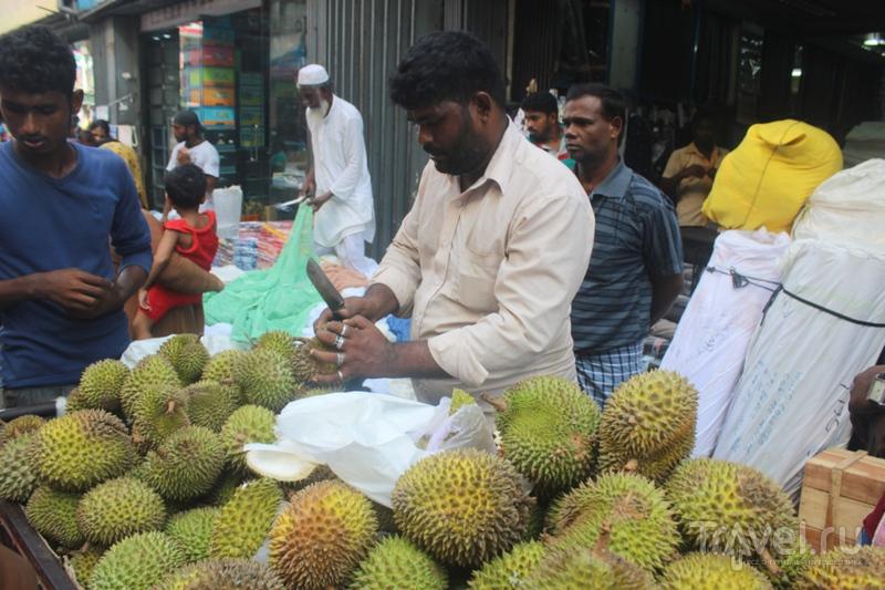 Обзор Шри-Ланки и немного Мальдив / Мальдивы