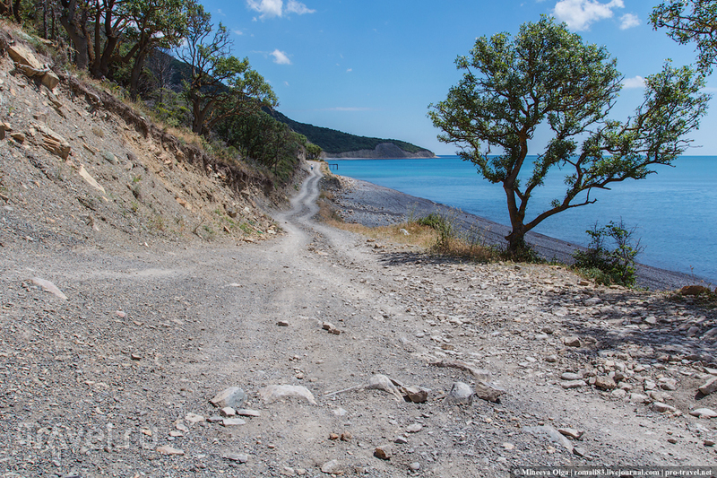 Горная дорога до Дюрсо / Фото из России