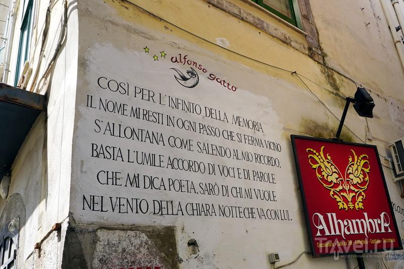 Один день круиза. Салерно, Италия / Италия