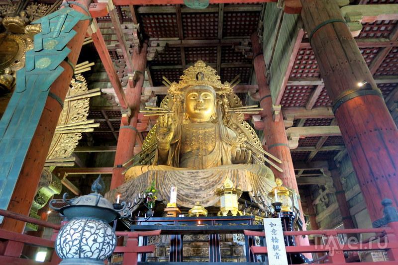 Нара - древняя столица Японии, и ручные олени / Фото из Японии