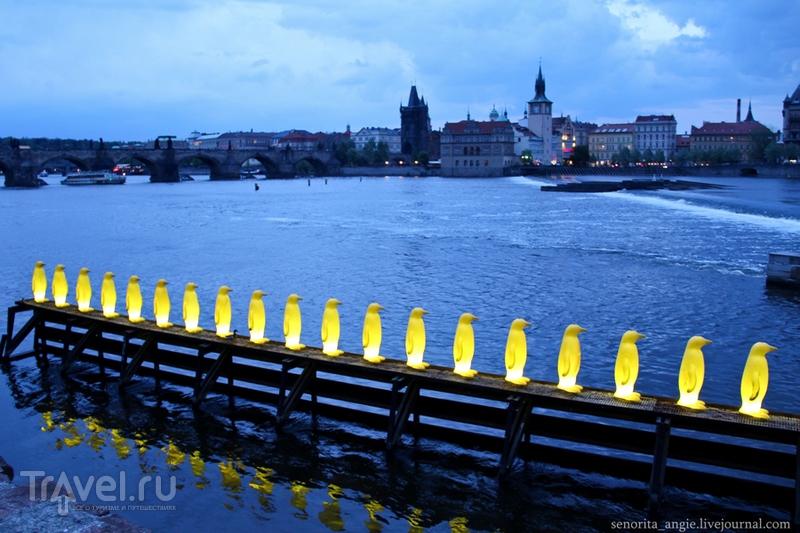 Классическая и современная вечерняя Прага / Чехия