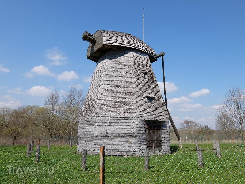 Великий Новгород, в этих срубах есть сердце и вены / Россия
