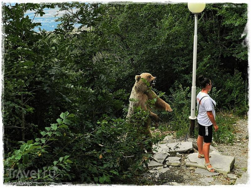 """Парк развлечений и спорта """"Олимп"""" в Геленджике / Фото из России"""