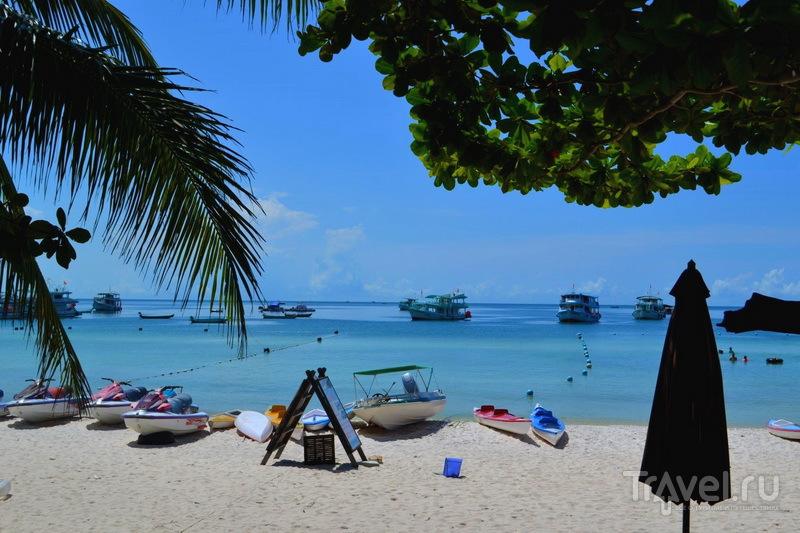 На пляже можно насладиться лучами солнца, морепродуктами и рыбалкой
