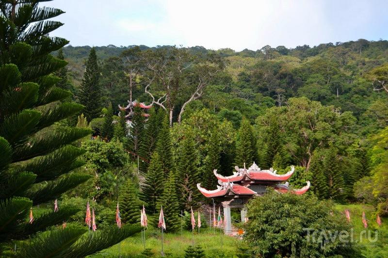 Дорога к пагоде Linh Son Truong Tho