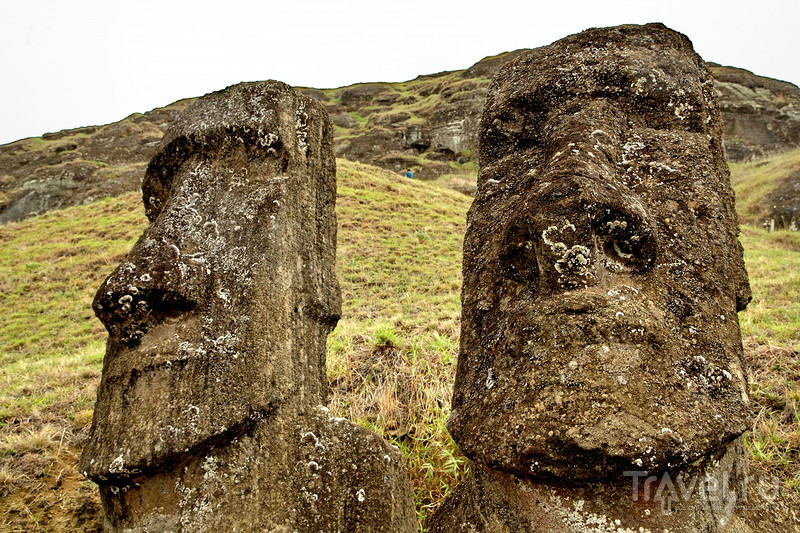 Здесь изготавливали моаи! / Фото из Чили