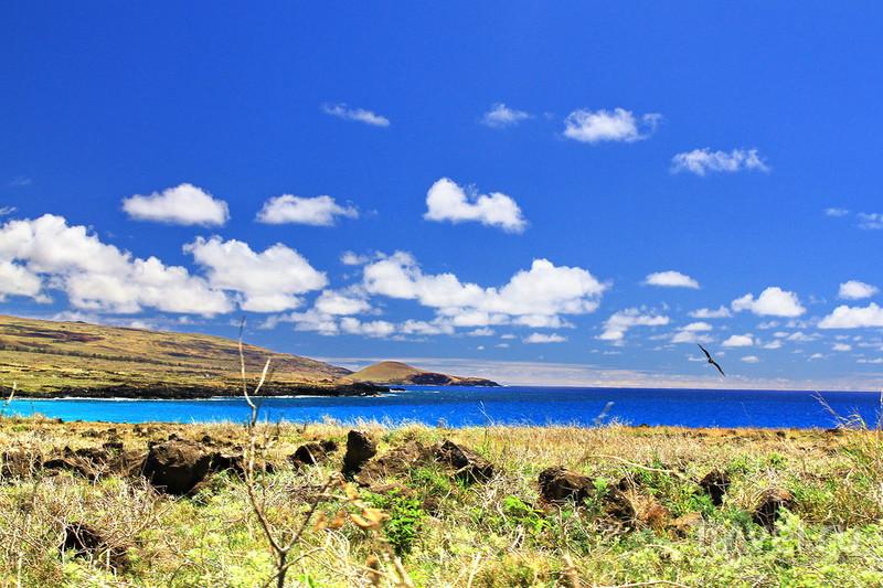 Пляж Овахэ / Фото из Чили