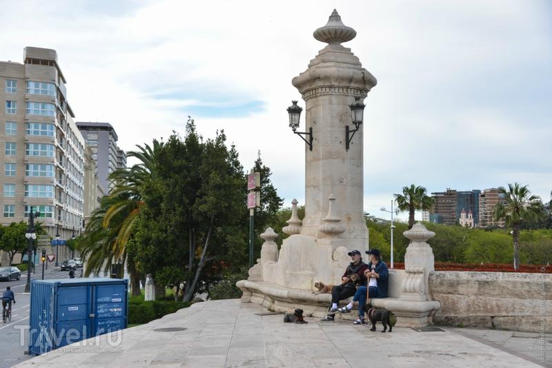 Валенсия non-stop. Река которой нет... / Фото из Испании