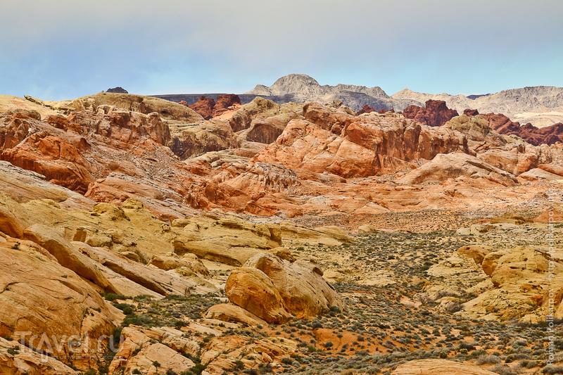 Fire valley недалеко от Лас-Вегаса / Фото из США