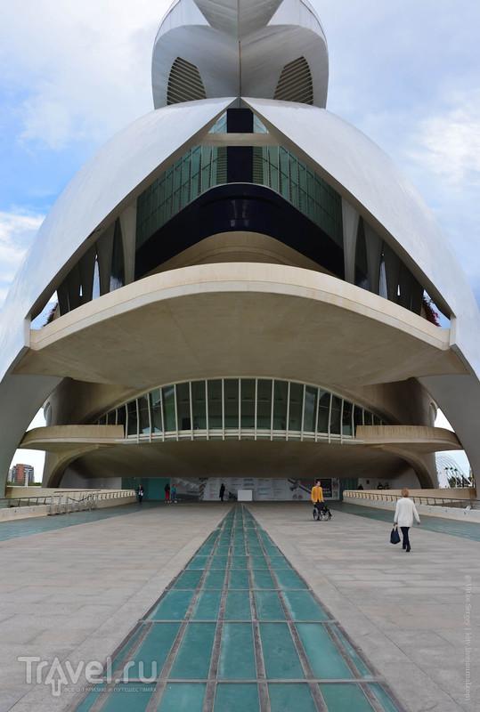 Футуристический город искусств и наук / Фото из Испании