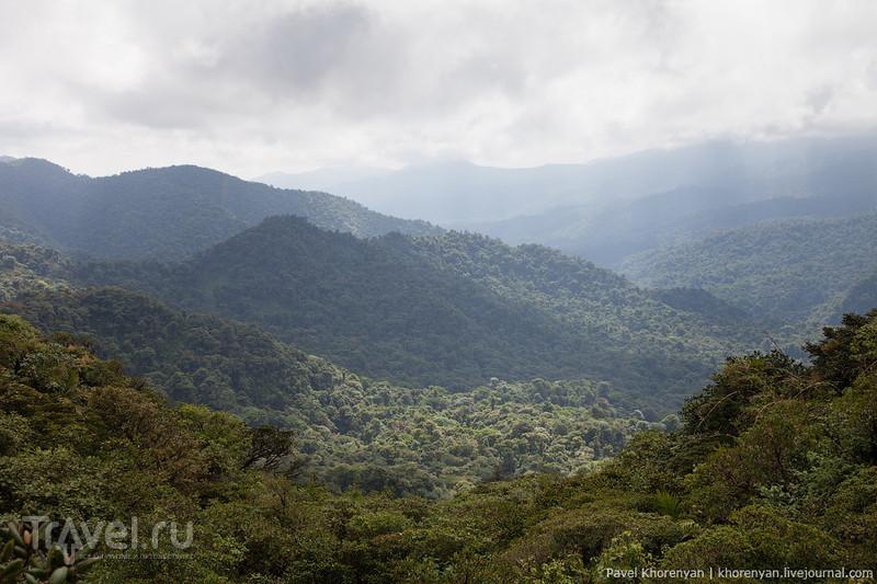 Коста-Рика / Фото из Коста-Рики