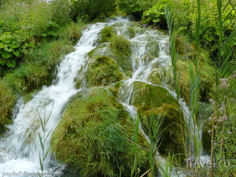 Словения - Хорватия без городов. Национальный парк Плитвицкие озера - Нижние озера / Фото из Хорватии