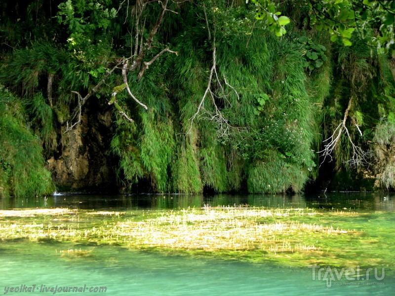 Словения - Хорватия без городов. Национальный парк Плитвицкие озера - Верхние озера / Фото из Хорватии