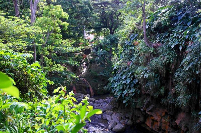 Гренада - Водопады / Гренада