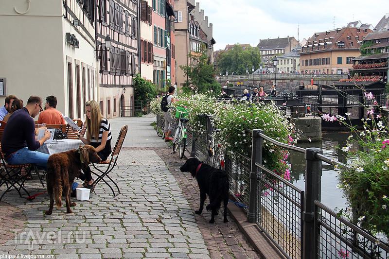Композиции Страсбурга / Франция