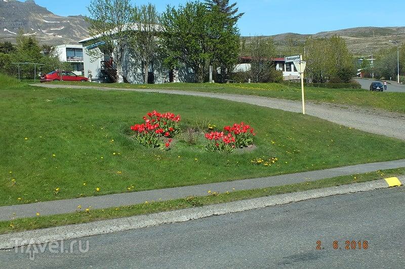Исландия. Город Stodvarfjordur / Фото из Исландии
