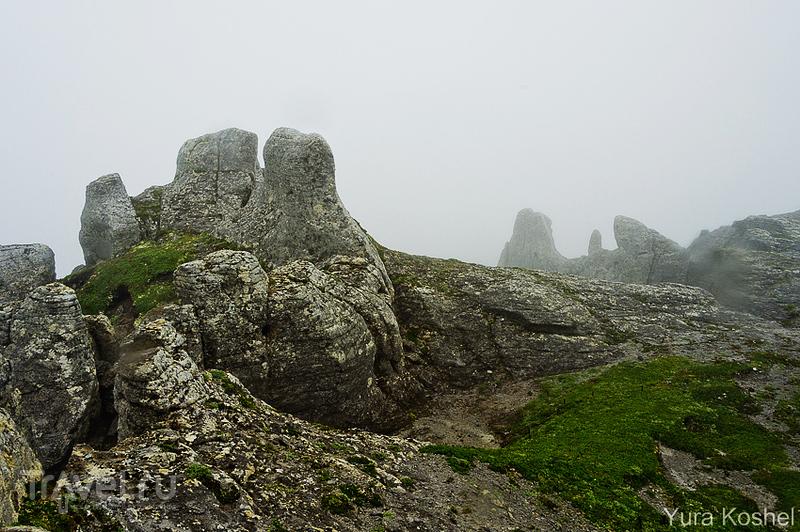 Камчатка. Каменный Городок / Фото из России
