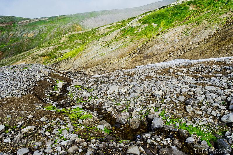 Камчатка. Южно-Камбальное Центральное термальное поле / Фото из России