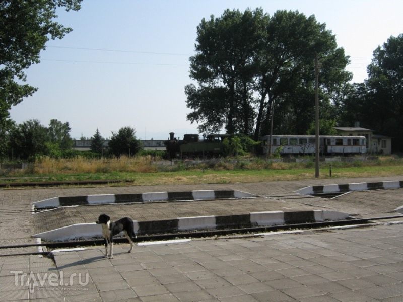 фото болгария лето