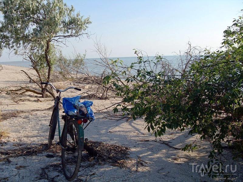 С колесом велосипедным, у лета, и у моря в гостях / Россия