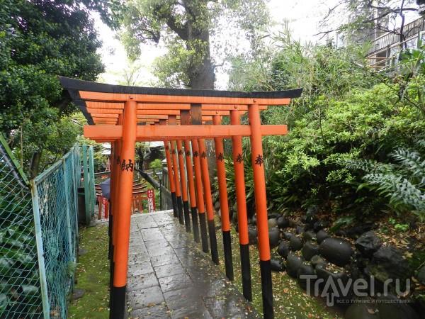 Токио / Япония