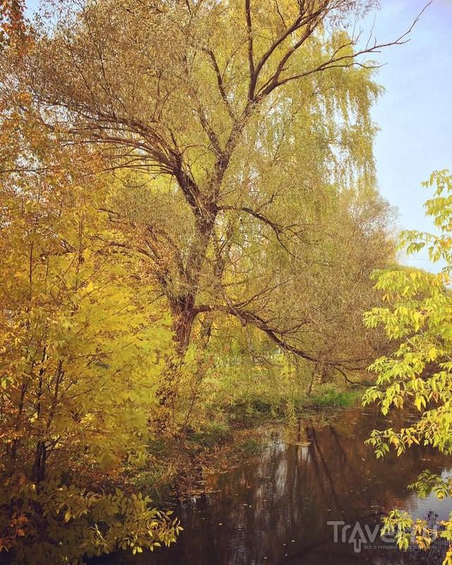 Золотая осень в Егорьевске / Россия