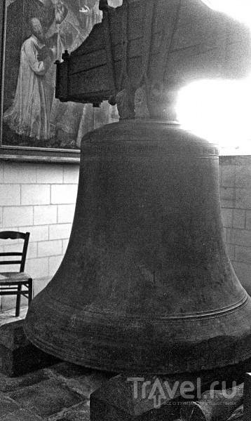 Невероятные приключения Митти Канта в краю шампанского / Фото из Франции