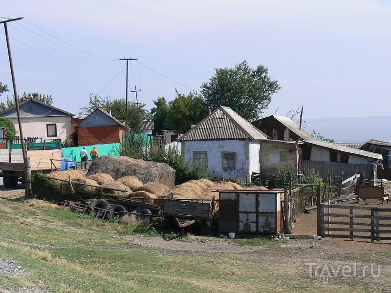 Чечня. Надтеречный район / Россия