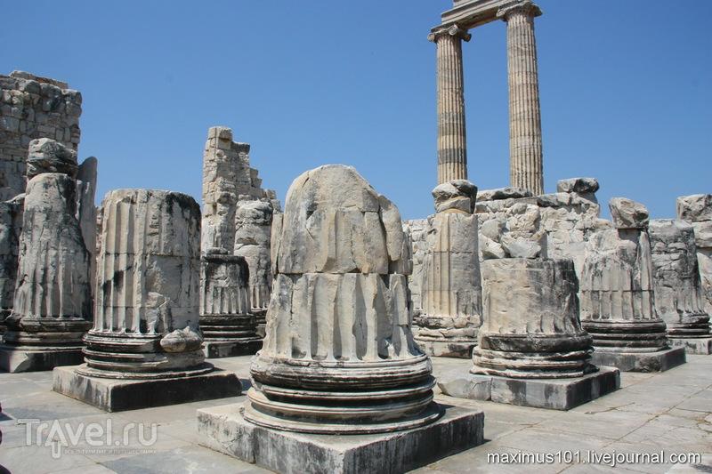 Храм Аполлона в Дидимах / Фото из Турции