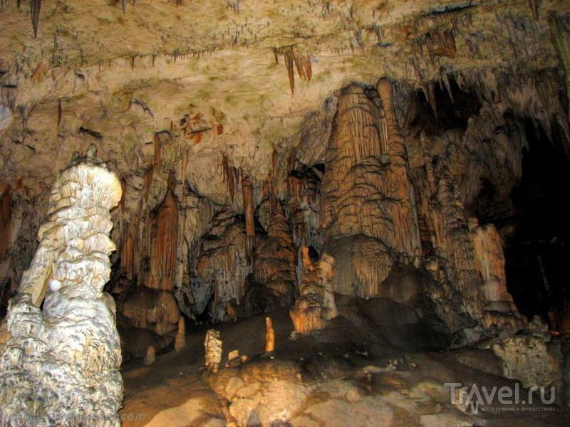 Словения - Хорватия без городов. Постойна Яма - подземное королевство / Фото из Словении