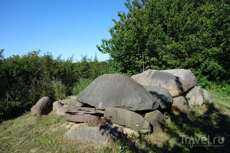 Oстров Рюген. Национальный парк Ясмунд / Фото из Германии