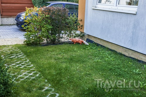 Отель в котором поселились лисы / Чехия