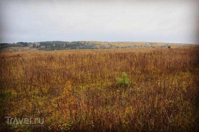 Успенский Паисиево-Галичский женский монастырь, Костромская область / Россия